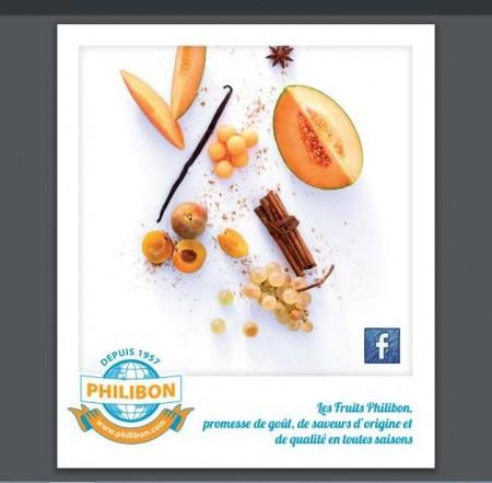 photo fruits PHILIBON
